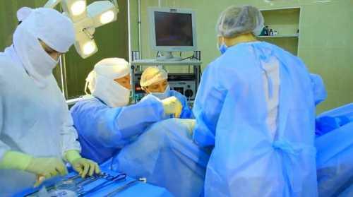 операция по спасению детёныша горбатого кита