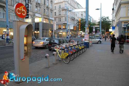 прокат велосипедов: бизнес план